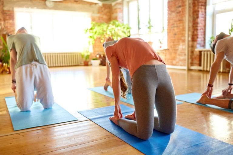 Yoga-Kurs auch für Einsteiger und Anfänger bei RhiaYoga in Winterthur und Dinhard